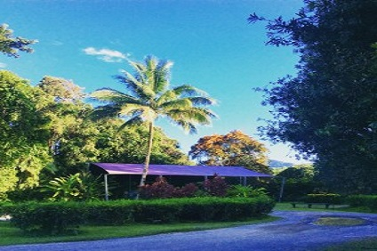 Daintree Ice Cream Company