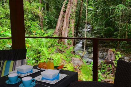 Black Palm Cape Tribulation Boutique Accommodation