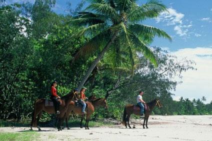 Cape Trib Horse Ride