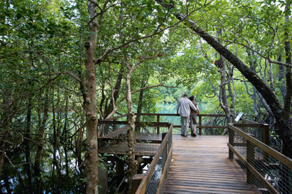 Self Guided Walks - Mardja Boardwalk