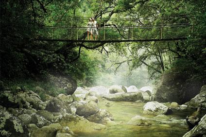 Ngadiku Dreamtime - Mossman Gorge
