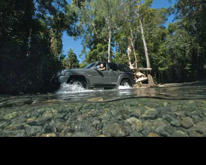 Daintree Adventurer