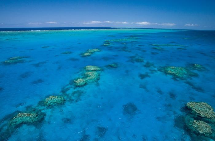 Reef Semi Ariel Shot